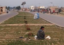 Cooperazione internazionale. Afghanistan, ad Herat anche un centro ambulanze.
