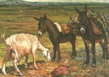Alla scoperta di Alfonso Grassi, pittore di Solofra, allievo prediletto di De Chirico.