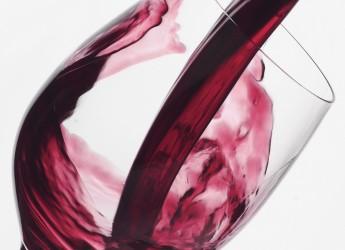 Sei incontri per amare e capire il vino. Dalla storia al giro del mondo