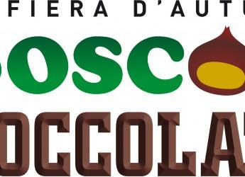 Fiera d' autunno: bosco e cioccolato a Rocca San Casciano.