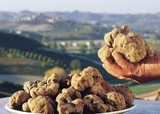 Dovadola. Due domeniche all'insegna del sapore in occasione della 49ma Sagra e Fiera del tartufo.