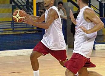RAvenna. A San Pietro in Campiano la festa del minibasket.