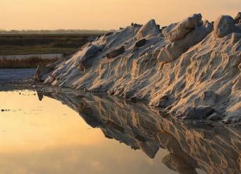 La terra del sale, l'arte, la tipografia e la storia. Le mostre di Cervia