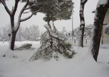 I numeri dell'emergenza neve. Un milione di euro di spesa e non è ancora finita