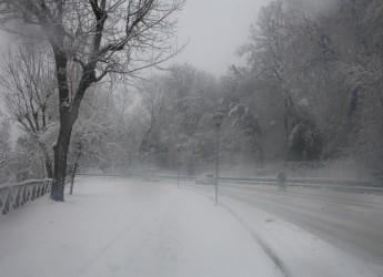 Continua l'emergenza neve a Cesena. Consegnati viveri e medicinali, famiglie evacuate