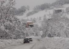 Maltempo a Rimini. La neve causa 350 mila euro di danni gli olivi