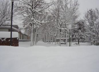 Emergenza neve. La più grande nevicata degli ultimi 100 anni. Il bilancio di Forlì