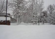 Novafeltria. La neve fa chiudere anche il Centro per l'impiego