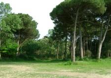 Emilia Romagna. Ravenna, presentato il programma di 'Ambiente 2012′