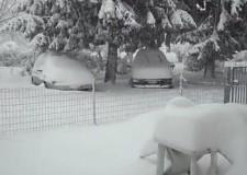 La nevicata peggiore dal 1929. Emergenza, costi e danni in consiglio provinciale.