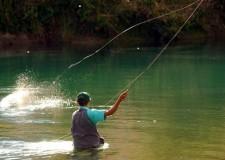 Rimini & Valmarecchia, approvato il calendario della pesca 2012.