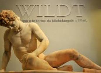 Forlì, quando l'arte incontra il gusto.Degustazioni al Museo di San Domenico.