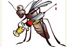 Incomincia la lotta alla zanzara. Parte la campagna di disinfestazione.