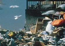 In arrivo il Tares. Cos'è? Il ( nuovo) tributo comunale su rifiuti e servizi.