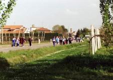 Primavera. La festa di Traversara con la 7° edizione della Fiera dei fiori.