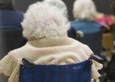 'Pet Therapy': attività di animazione a favore di portatori di handicap e anziani disabili.