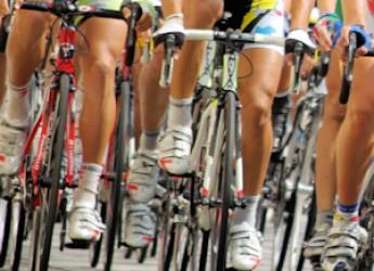 Piacenza. La città prima in regione per densità di società ciclistiche sportive.