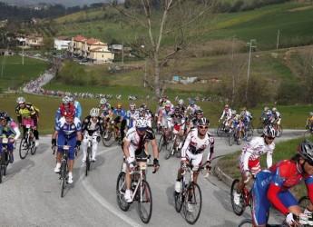 Faenza. Chiusura del parcheggio di via Lesi per una corsa ciclistica giovanile nel vicino circuito.