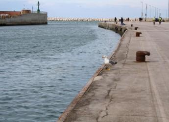 Emilia Romagna. Cresce il turismo a Rimini nei primi tre mesi dell'anno.