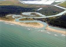 Emilia Romagna. La tutela della riserva naturale 'Duna costiera ravennate e foce del Bevano'.