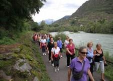 Faenza. Prima escursione a piedi e in bicicletta nei luoghi di culto del territorio appenninico faentino.