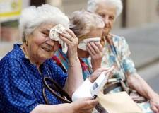 Cesena. Allerta caldo in città, la rete dei servizi attiva per anziani e le altre categorie a rischio. Ecco chi chiamare in caso di emergenza.