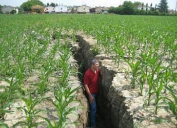 Terremoto in Emilia Romagna. Il trauma da scosse può mettere in pericolo (anche) la salute?