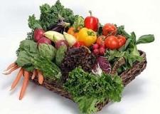 Emilia Romagna. Agroalimentare: la difesa dei prodotti Dop, Igp, tipici e tradizionali.