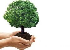 Emilia Romagna & Rimini: accordo per finanziamenti alle aree produttive ecologicamente attrezzate.