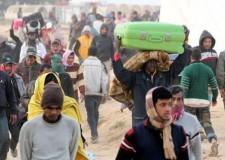 Ravenna. Inserimento lavorativo dei profughi, accordo tra Ecogest e Prefettura di Ravenna per un nuovo impegno sociale.