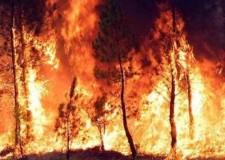 Emilia Romagna. Piano regionale contro gli incendi boschivi, in vigore fino al 31 dicembre 2016.