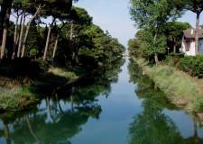 Cervia Milano Marittima. Una nuova 'Passeggiata ecologica in pineta', per lunedì 20 agosto.
