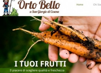 Desideri un orto tutto tuo? Ora c'è 'Orto Bello Cesena', angoli di terra 'anti crisi'.
