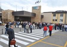 Emilia Romagna. La Regione e l'Ortofrutticoltura. Obiettivo: una nuova normativa europea.