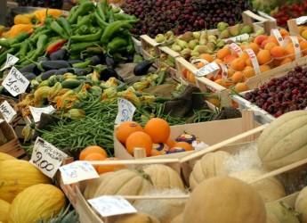 Ravenna. Festa d'autunno al mercato contadino di piazza della Resistenza.