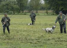 Emilia Romagna. Caccia: indispensabile posticipare l'avvio della stagione. Fauna in difficoltà.