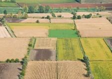 Emilia Romagna. Agricoltura e sviluppo rurale: la riunione con l'Arepo.