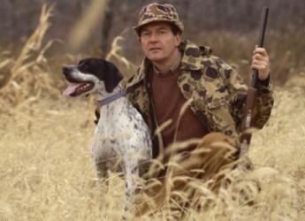 Firenze. Gli animalisti attaccano la caccia al cinghiale. 'Uccidere animali non risolve il 'problema', quelli che rimangono diventano più prolifici'.