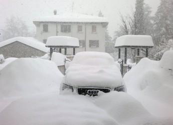 Emilia Romagna. Cesena: verso il risarcimento dei danni della neve di febbraio.