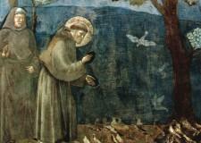 San Francesco d'Assisi, il santo della libertà e della povertà. Amato protettore degli animali.