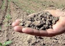 Emilia Romagna. Siccità: otto milioni di danni all'agricoltura nella provincia di Rimini.