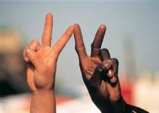 Emilia Romagna. Fratellanza: 'Insieme per la pace: dialogando', 8 appuntamenti a Ravenna.