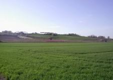 Emilia Romagna. Agricoltura & siccità: accesso al credito più conveniente per le imprese.