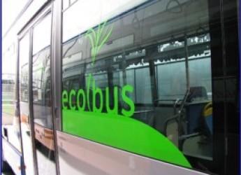Emilia Romagna. Arrivano gli autobus ecologici: 19 milioni per il rinnovo del trasporto pubblico.