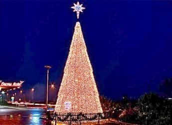 Riccione& Albero di Natale. In allestimento. E sarà visibile anche da lontano.