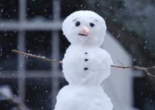 Emilia Romagna. Neve: scuole chiuse? a Ravenna è stato sperimentato l'avviso con sms.