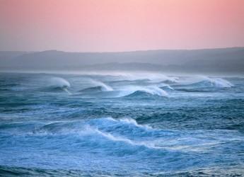 Mare Adriatico: il punto. Lo stato delle acque marine in Emilia Romagna ( anno 2012).