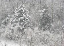 Previsioni meteo. Arriva 'Attila': Italia nel gelo fino all'8 dicembre.