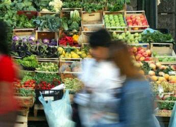 Italia. Un'indagine di Altroconsumo evidenzia il calo nei consumi delle famiglie italiane. La crisi ha portato a una spesa più attenta da parte dei consumatori.