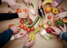 Emilia Romagna. Contro lo spreco alimentare, risorse per il Last Minute Market.